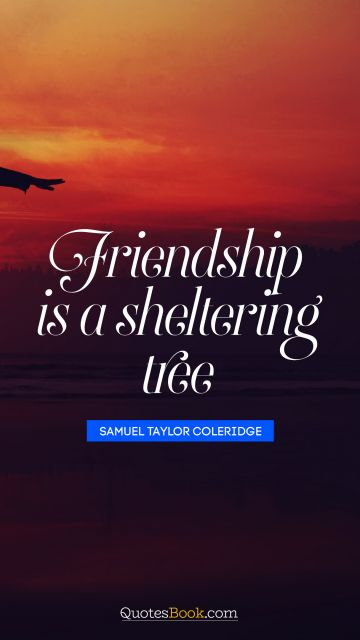 Friendship is a sheltering tree