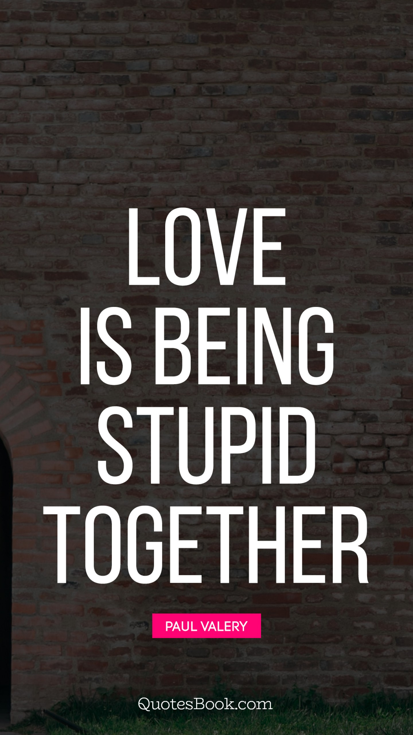 Love is being stupid together. - Quote by Paul Valery - QuotesBook